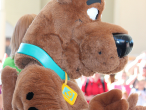 Scooby Doo Throw Blankets